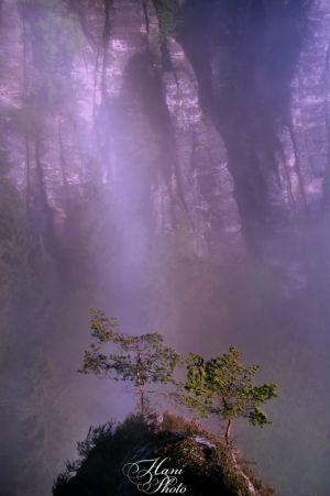 DSC_4824HaniPhoto_resize.jpg