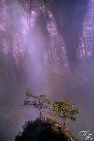 Bastei_DSC_4824HaniPhoto_resize.jpg
