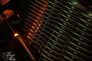 DSC_9583HaniPhoto_resize.jpg