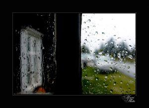 DSC_9679HaniPhoto_resize.jpg