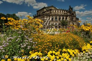 DRESDEN_SEMPEROPER_5543a.jpg